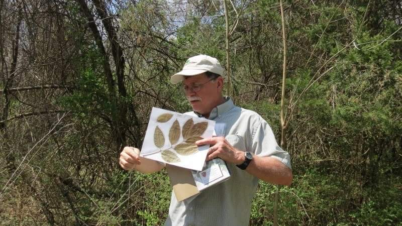 Charlottesville Area Tree Stewards Host a Tree Walk in the Botanical Garden of the Piedmont site