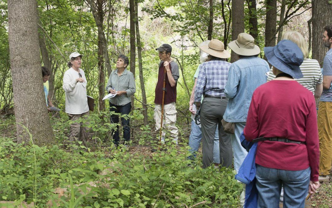 FULL: 2 Tree Walks at Future Site of Botanical Garden